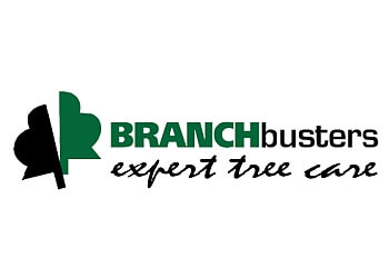 Caledon tree service Branchbusters Expert Tree Care