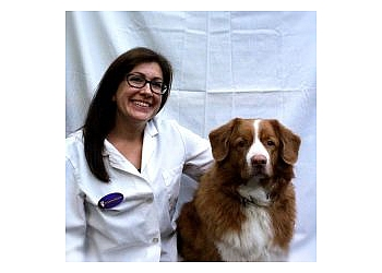 Hamilton veterinary clinic Briarwood Animal Hospital