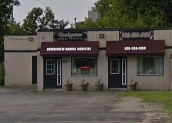 Niagara Falls veterinary clinic Bridgeview Animal Hospital