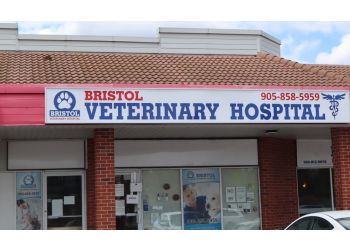 Mississauga veterinary clinic Bristol Veterinary Hospital
