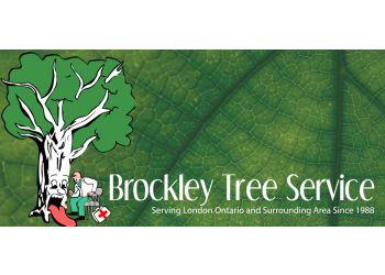 London tree service Brockley Tree Service