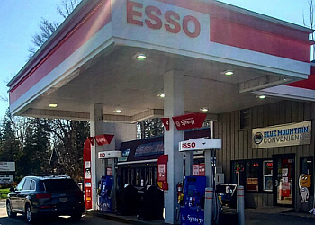 Brantford sign company Brooks Signs