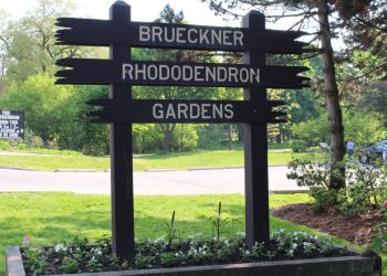 Mississauga places to see Brueckner Rhododendron Gardens