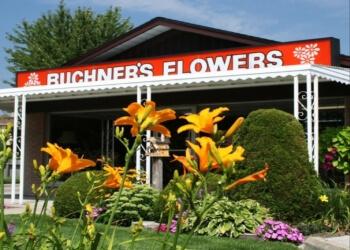 Buchner's Flowers