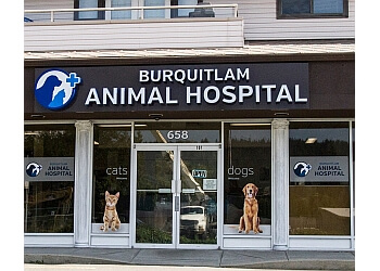 Coquitlam veterinary clinic Burquitlam Animal Hospital