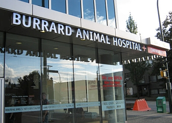 Vancouver veterinary clinic Burrard Animal Hospital & Emergency