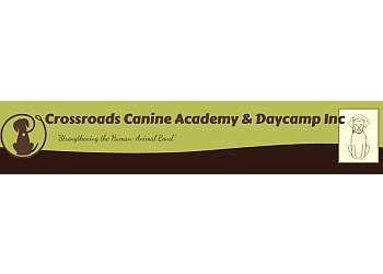 Windsor dog trainer CROSSROADS CANINE ACADEMY & DAYCAMP INC.