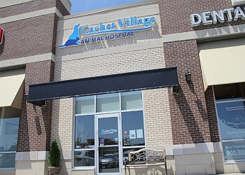 Markham veterinary clinic Cachet Village Animal Hospital