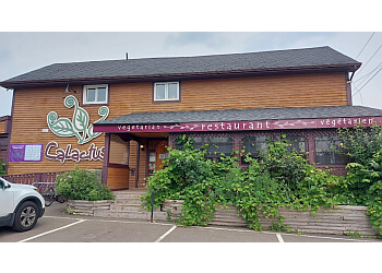 Moncton vegetarian restaurant Calactus