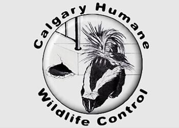 Calgary animal removal Calgary Humane Wildlife Control