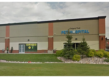 Edmonton veterinary clinic Calgary Trail Pet Hospital