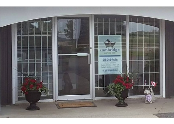 Cambridge pet grooming Cambridge Grooming & Spa