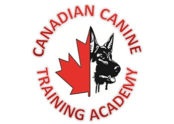Ottawa dog trainer Canadian Canine Training Academy