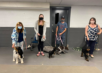 Fredericton dog trainer Capable Canines Dog Training