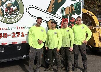 St Albert tree service Capital City Tree Service