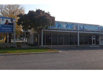 Ottawa veterinary clinic Carling Animal Hospital
