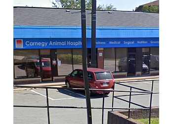 Halifax veterinary clinic Carnegy Animal Hospital