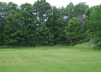 Vaughan golf course CarrickMacross Golf Centre