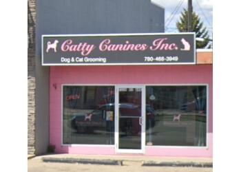 Edmonton pet grooming Catty Canines Inc.
