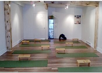 Trois Rivieres yoga studio Centre Viniyoga Vitalité