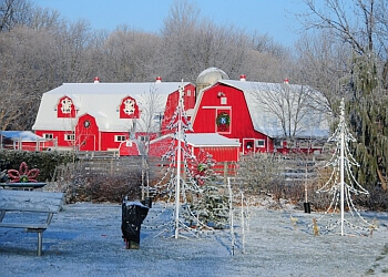 Sarnia places to see Children's Animal Farm
