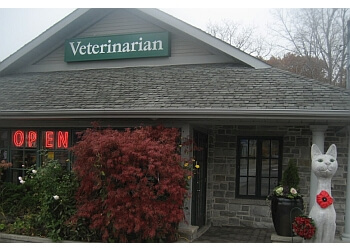 Mississauga veterinary clinic Clarkson Village Animal Hospital