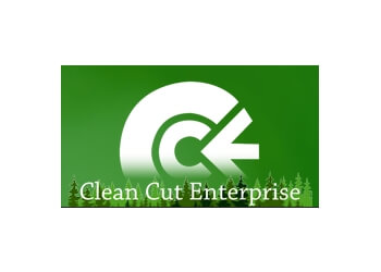 Brampton tree service Clean Cut Enterprise