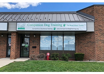 Cambridge dog trainer Companion Dog Training