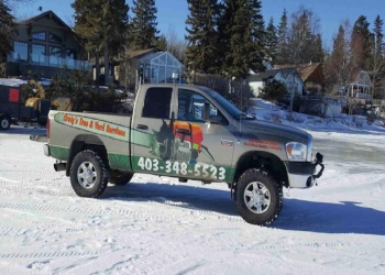 Red Deer tree service Craig's Tree and Yard Services