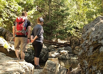Kelowna hiking trail Crawford Falls