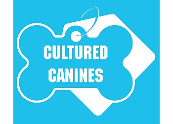 Cultured Canines