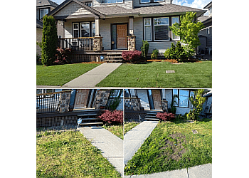 Burnaby lawn care service Curb Appeal Landscapes