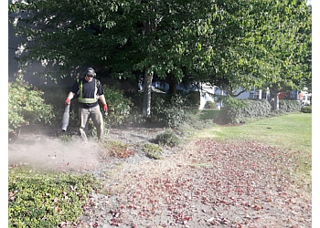 3 Best Lawn Care Services In New Westminster Bc