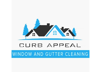 Belleville window cleaner Curb Appeal Window and Gutter Cleaning