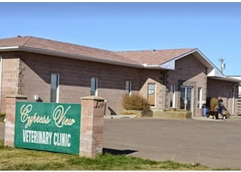 Medicine Hat veterinary clinic Cypress View Veterinary Clinic
