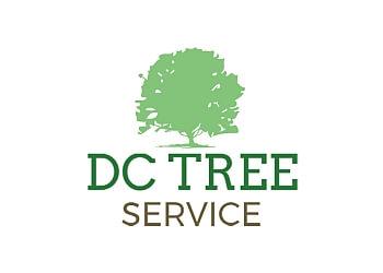 Regina tree service DC Tree Service