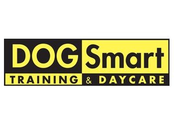 Dog Daycare Vancouver Reviews