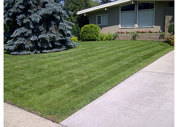 Edmonton lawn care service Dave Does Lawns Ltd.