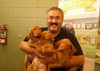 Niagara Falls dog trainer Dave McMahon's Dog Training Academy