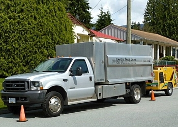 Dave's Tree Care North Vancouver Tree Services