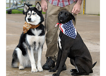 Delta dog walker Delta Pet Care