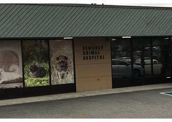 Maple Ridge veterinary clinic Dewdney Animal Hospital