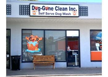 Hamilton pet grooming Dog-Gone Clean Inc.