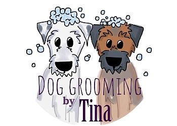 Saint John pet grooming Dog Grooming by Tina