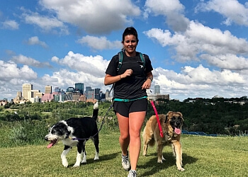 Edmonton dog walker Dog Jogs