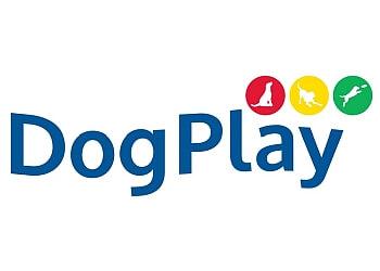 DogPlay