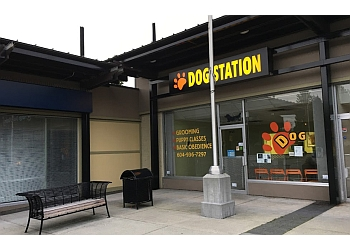 Coquitlam dog trainer  Dog Station Grooming Training & More