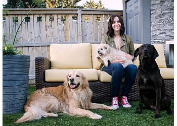 Saskatoon dog trainer Dog Trainer Lea