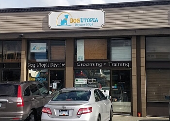 Surrey pet grooming Dog Utopia Daycare & Spa