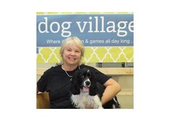 Markham dog trainer Dog Village